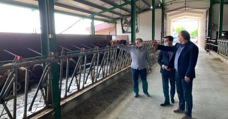 Menekşe süt üretim tesisinde incelemelerde bulundu